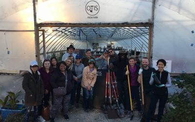 MSL Chicago Professionals UNEARTH Community Health